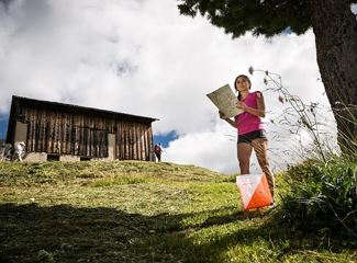 Orienteering - Explore your way