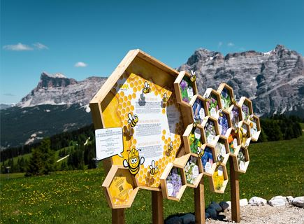 Movimënt dles ês - Route dedicated to the world of bees