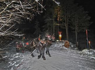 Discovering the artists'path on horse sleighs
