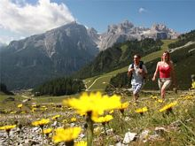 Natural park Puez-Odle & Edelweiss valley