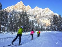 Rental Cross Country Ski School